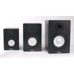 Студийные мониторы Axelvox PM-4A (пара) - 1