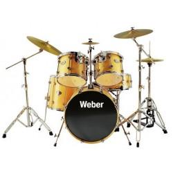 Weber Performance