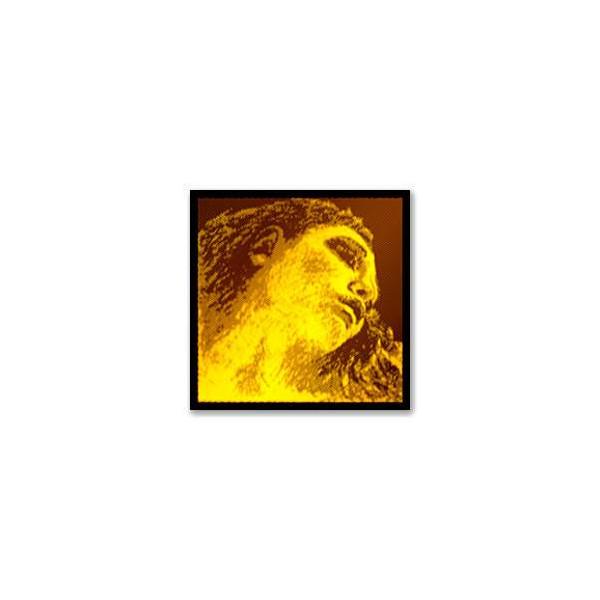 Pirastro 415021 Evah Gold Violin