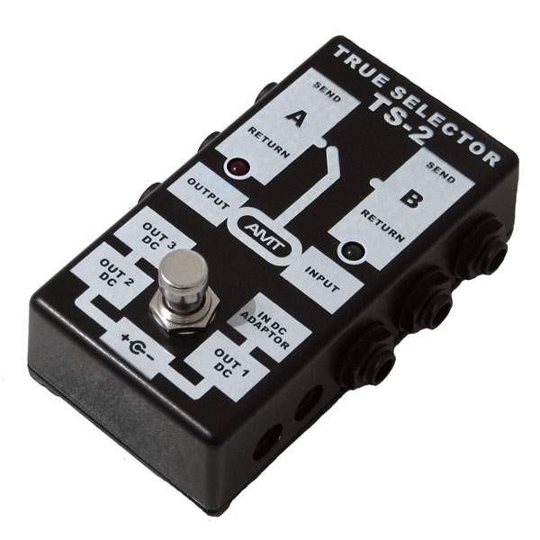 AMT electronics TS-2 TRUE SELECTOR