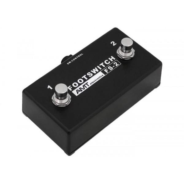 AMT electronics FS-2