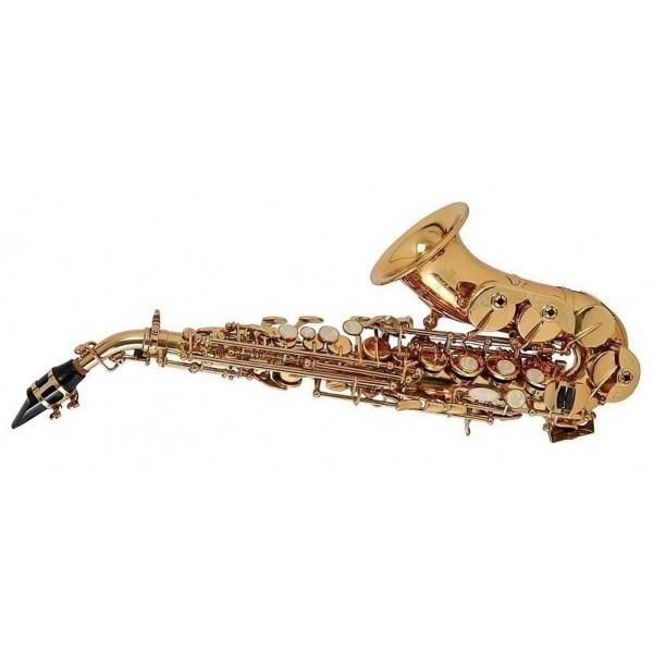Саксофоны Roy Benson SG-302 - 1