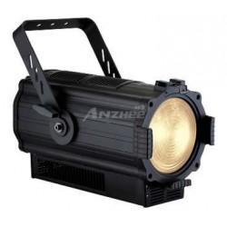 Anzhee PRO PWash-200W-ZOOM