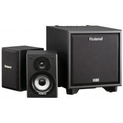 Roland Cube-monitor-110