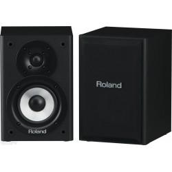 Roland Cube-monitor-220