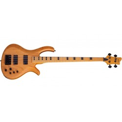 Schecter Riot Session-4 ANS