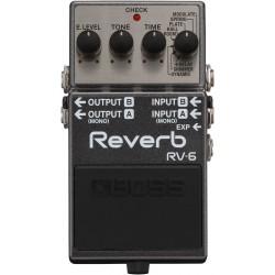 Roland RV-6
